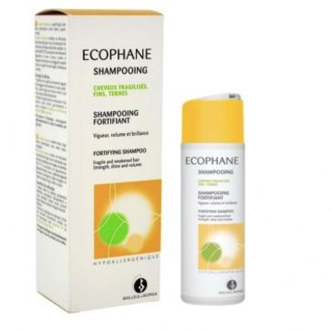 Ecophane Champô 200 ml + Oferta Champô 100 ml