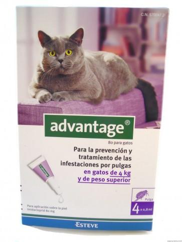 Advantage Gato Solução Unção 4-8 Kg 0,8 ml x 4