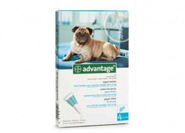 Advantage Cão Solução Unção 4-10 Kg 1 ml x 4