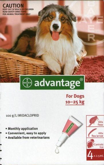 Advantage Cão Solução Unção 10-25 Kg 2,5 ml x 4