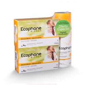Ecophane Comprimidos x 60 + Oferta Champô 100ml